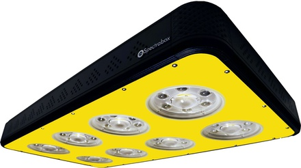 800W Spectrabox LED