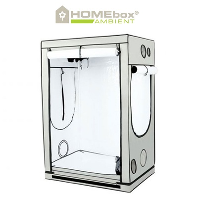 HOMEbox Ambient R120